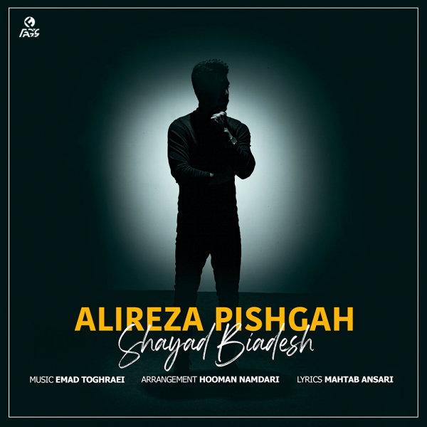 Alireza Pishgah - Shayad Biadesh Song'