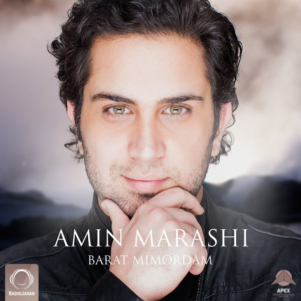Amin Marashi - Barat Mimordam Song | امین مرعشی برات میمردم'