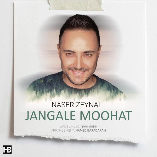 Naser Zeynali - Jangale Moohat Song | ناصر زینلی جنگل موهات'