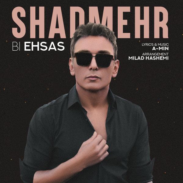Shadmehr Aghili - Bi Ehsas Song   شادمهر عقیلی بی احساس'