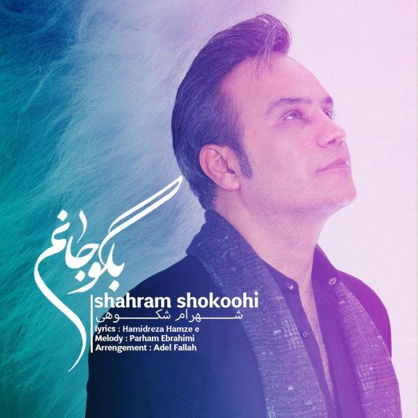 Shahram Shokoohi - Begoo Janam Song   شهرام شکوهی بگو جانم'