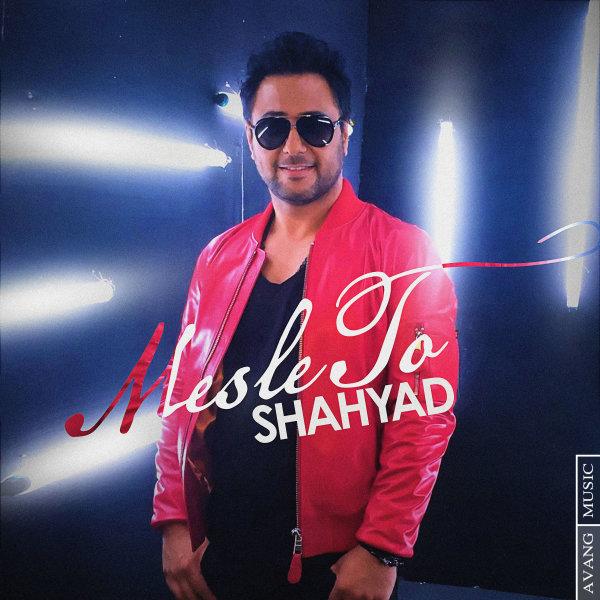 Shahyad - Mesle To Song | شهیاد مثل تو'