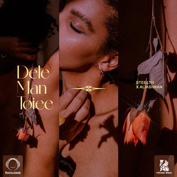 Steelth & Aliashkan - Dele Man Toiee Song'