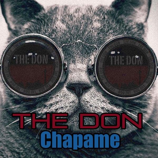 The Don - Chapame Song   دن چپمه'